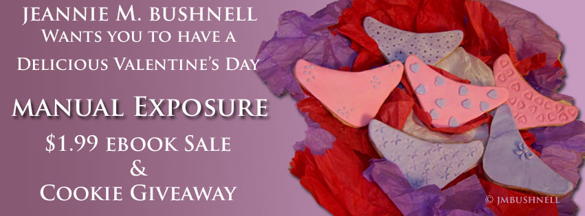 Valentine's Day Sale and Cookie Giveaway Banner