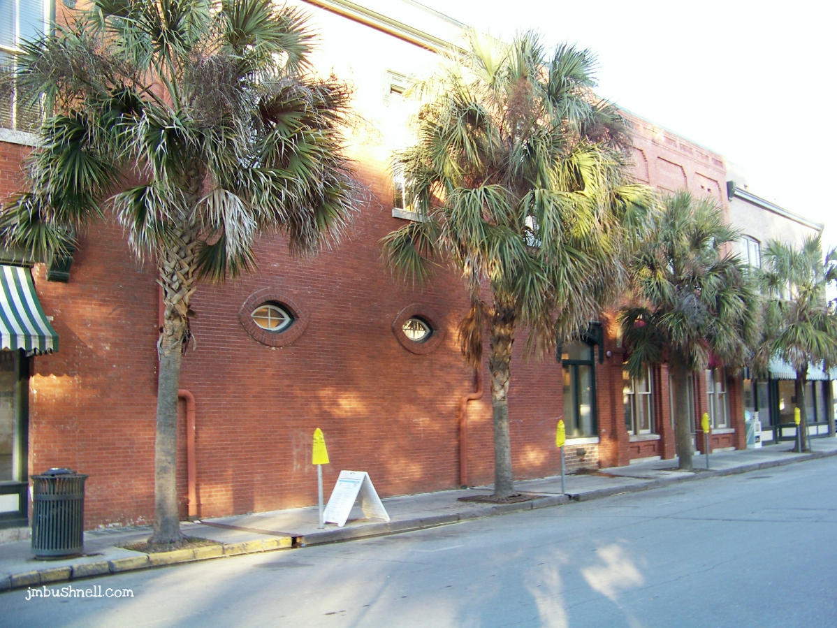 Palm Trees in Historic Savannah, Georgia